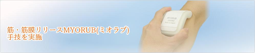 筋筋膜性疼痛症候群(MPS), トリガーポイント鍼・美容、筋膜リリース 群馬県前橋市 トリガーポイント治療院