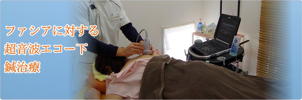 筋膜性疼痛症候群(MPS), トリガーポイント鍼・美容、筋膜リリース 群馬県前橋市 トリガーポイント治療院
